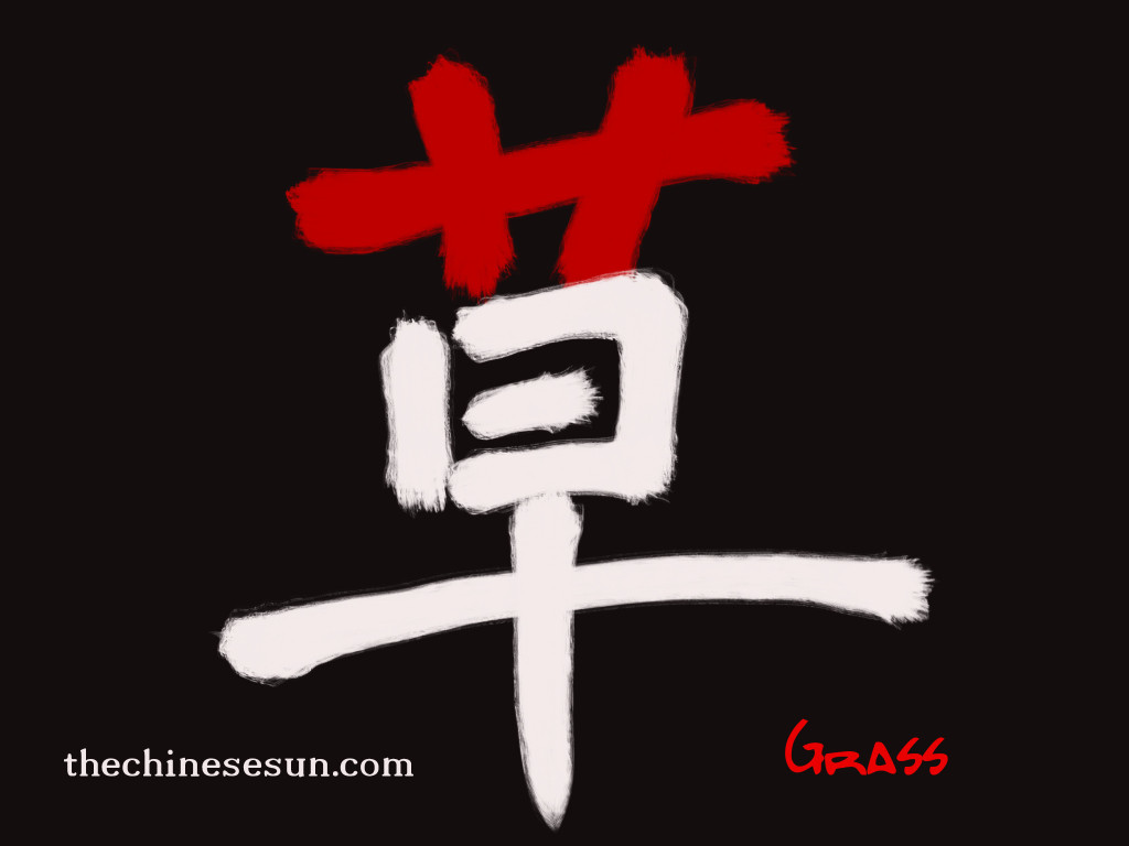 learn how to write Chinese characters , Chinese characters writing, creative Chinese character writing