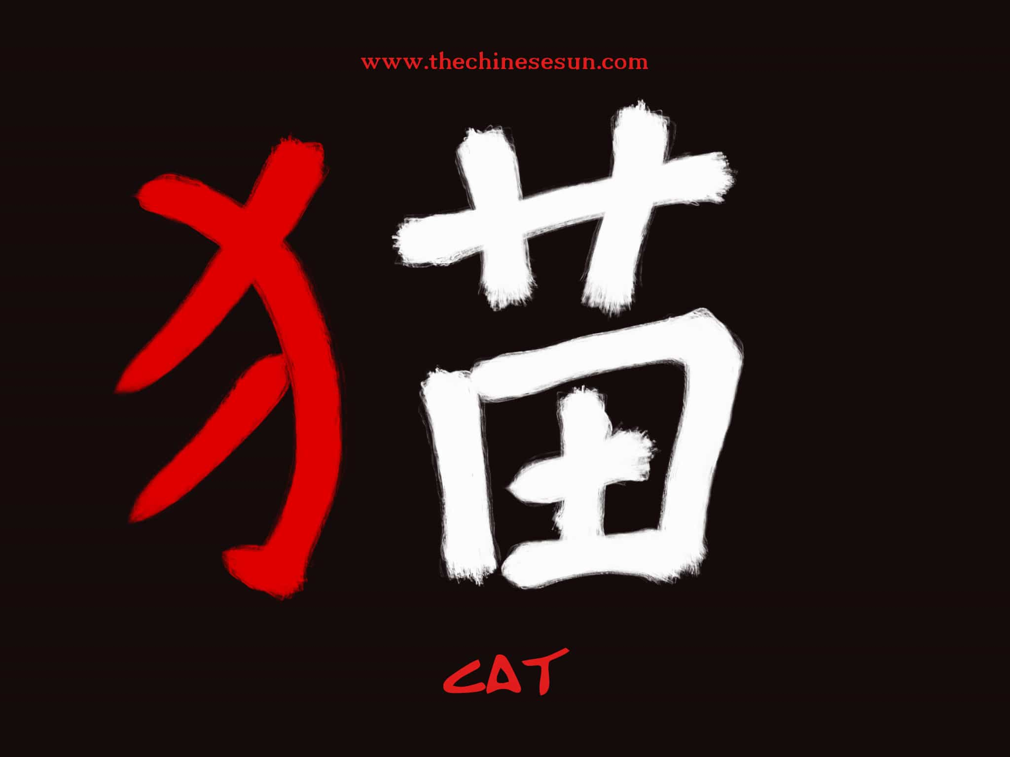 Basic Chinese Radicals Cat In Chinese Characters Chinese Writing